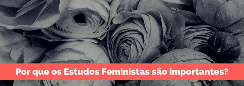 estudos feministas